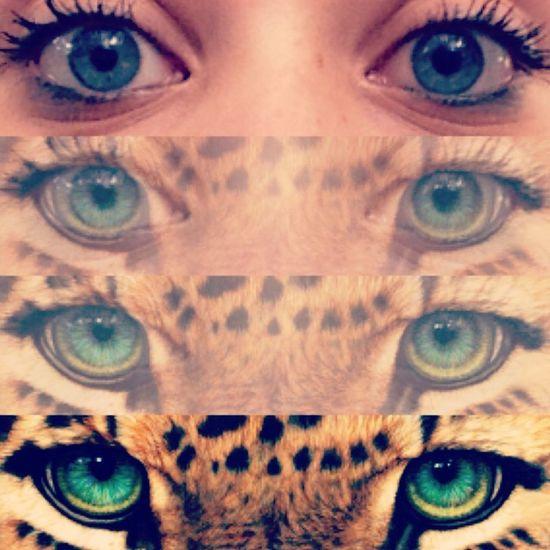 Gli occhi sono lo specchio dell'anima..