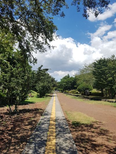 A road in the garden EyeEm Gallery Summertime Afernoon Tree Road Diminishing Perspective Sky Cloud - Sky Treelined Pathway Walkway Scenics Empty Road Long