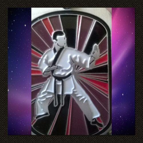 Taekwondo 8thDan Sahyun Judo KodokanKyuDan 5thDan Chop Suey!!