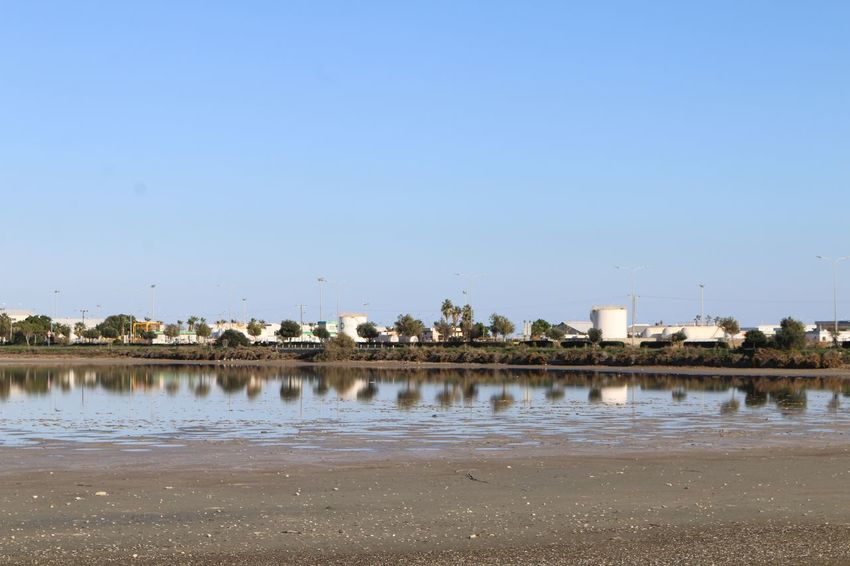 Cyprus Larnaca, Cyprus Larnaca Reflections Reflection Larnaca Salt Lake Water Copy Space Nature Day Outdoors No People Lake Clear Sky Bird Animal Themes Beauty In Nature Salt Basin Salt - Mineral Sky