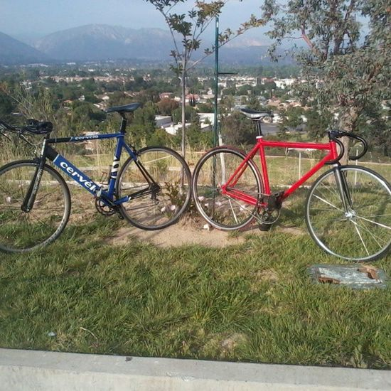 A few days ago at the park c: Justbikesandshit Stayfixed Cervelo Goingfast climbinghills hills view lookingcute @prototype8118