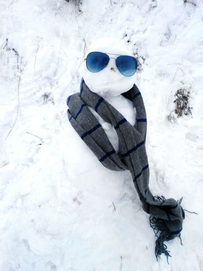 It's winter - And its the cool guy Check This Out Taking Photos Showcase: December Wonderlust Cool Beautiful Snow Amazing Himalayas Snowman Love EyeEm Nature Lover Adventure First Eyeem Photo Longdrive Nature