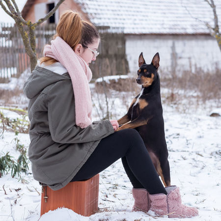Animal Themes Cold Temperature Day Dog Doggie Domestic Animals Female Hay Outdoors Outside Pets Play Puppy Puppyeyes Snow Snowball