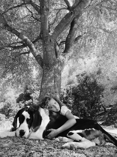 Portrait of girl relaxing with great dane at park