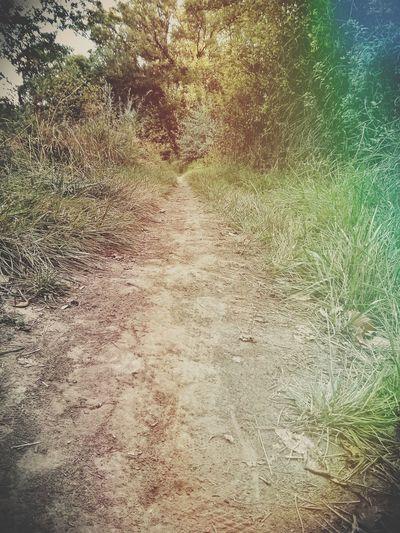 Go explore. Nature Hiking Adventures
