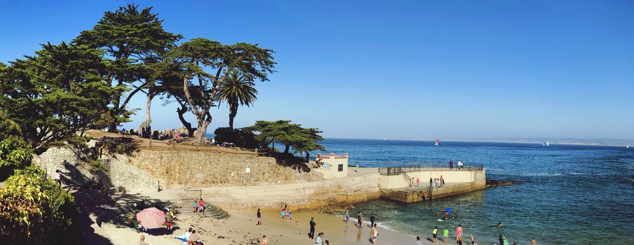 Connected By Travel Sea Water Beach Tree Large Group Of People Clear Sky Real People Blue Day Nature Horizon Over Water Vacations Outdoors Palm Tree Men Scenics Leisure Activity Beauty In Nature Built Structure Nautical Vessel Travel Destinations Pacific Grove, Ca Shotonphone