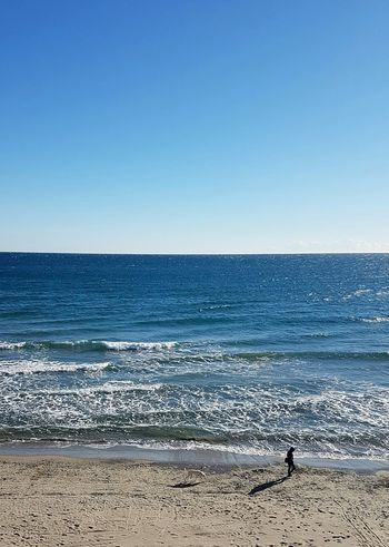 Sea Horizon Over Water Beach Blue Sky Water Clear Sky Sand Outdoors Sunlight Day Tranquility Nature Scenics Beauty In Nature Dogandman Freedom Vacations Onthebeach Italiantravel Liguria,Italy Clear Sky Relaxed Moments Relaxing At The Beach Walking On The Beach
