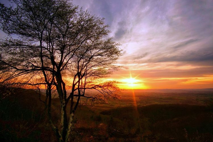 Wont Be Selected For Market But I Dont Care Blue Ridge Parkway Mountains Mountain Sky Sunset Beauty In Nature Tranquility Tree Cloud - Sky Scenics - Nature Tranquil Scene Sun Nature Silhouette Sunlight Idyllic Landscape No People Orange Color Land Environment