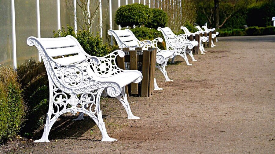 Germany Schmetterlings-garten Friedrichsruh Bench Chair White Color Outdoors No People Day Tree Nature Benches In A Row EyeEmNewHere The Street Photographer - 2017 EyeEm Awards Live For The Story Breathing Space Welcomeweekly The Week On EyeEm Investing In Quality Of Life EyeEmNewHere Mix Yourself A Good Time The Street Photographer - 2018 EyeEm Awards