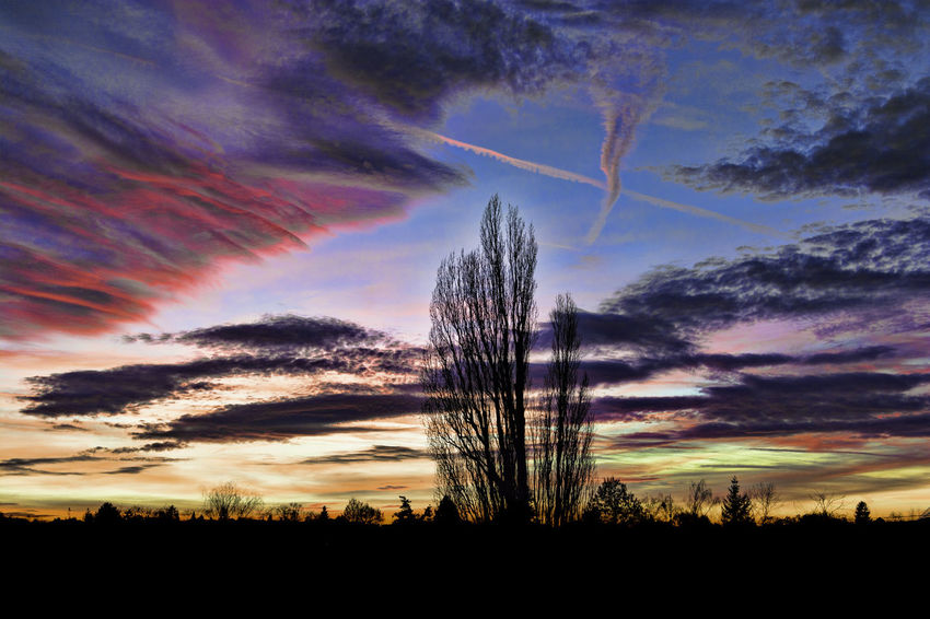 Magic colourful cloudy sky on sunset Beauty In Nature Cloud - Sky Colorful Sky Colorful Sunset Nature No People Outdoors Sky Sunset Tree Traveling Home For The Holidays