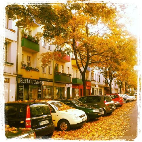 #Berlin #Knobelsdorff im #Herbst #autumn #Charlottenburg Berlin Autumn Herbst Charlottenburg  Knobelsdorff