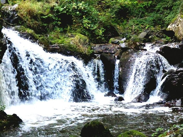 Cascade Waterfall de Corrèze. France. Nature Water Scenics Tranquil Scene No People Beauty In Nature Tranquility Outdoors Tree Motion Forest Plant Day Landscape Growth Cascade