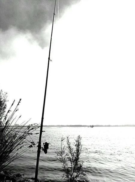 B&W thoughts Love ♥ Sadness😢 Brokenhearted EyeEmbestshots Eye Em Best Shots EyeEm Nature Lover Black And White Black&white Black & White Blackandwhite Eyemphotography Deltadelebre EyeEm Best Shots Fishing Rod Fishing Nopeople Learn & Shoot: Simplicity How Do You See Climate Change?