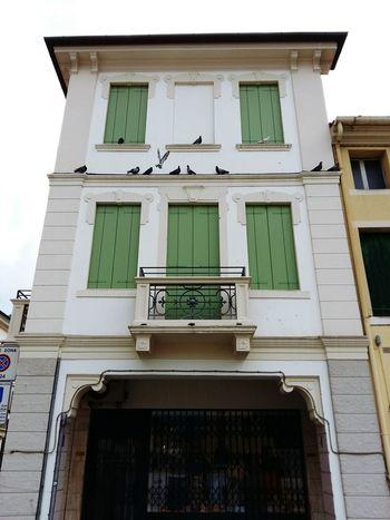 Building Exterior Windows Green Pulpit Portcullis Birds Balconies Cittadella 2016