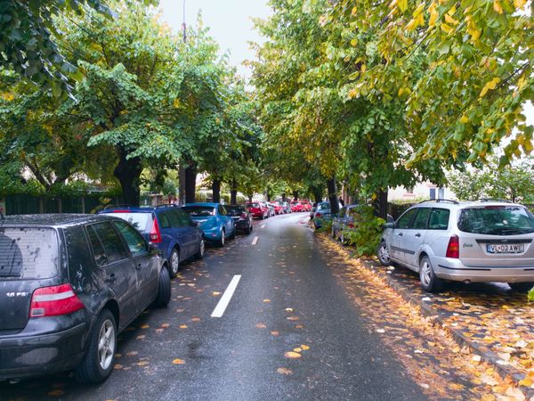 Autumn is here ! Autumn Colors Leaves🌿 Tree Parked In A Row Stationary Road Growth Treelined Outdoors No People EyeEm Gallery EyeEmBestPics City Life Sibiu Romania