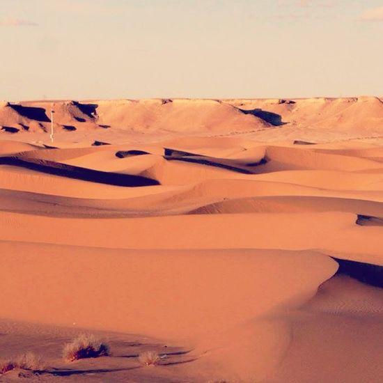 Desert Hanging Out Hello World Enjoying Life Photo