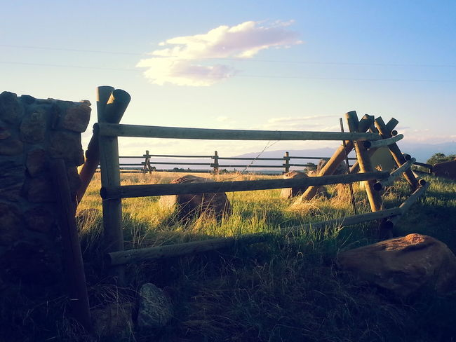 Colorado Day Nature Nature Photography EyeEm Best Shots Nature_collection NaturePhotography🌼 Outdoors Ranch Ranch Life Sky The Great Outdoors - 2017 EyeEm Awards The Week On EyeEm