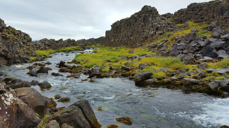 Pingvellir Game Of Thrones Nationalpark Iceland WaterStream Tranquil Scene Tranquility Scenics Rock - Object Beauty In Nature Flowing Nature Tree Non-urban Scene Sky River Travel Destinations Flowing Water Tourism Outdoors Plant Day Growth