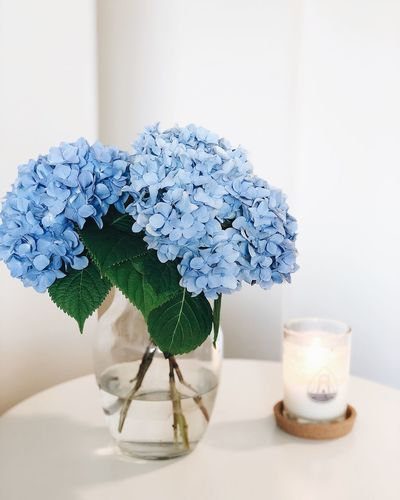 Hydrangeas Earth Garden Fresh Flower Flowers EyeEm Selects Indoors  Table No People Nature Still Life Close-up Freshness Plant Refreshment Leaf Vase Home Interior Green Color Drink Plant Part Flower Growth Glass Wall - Building Feature