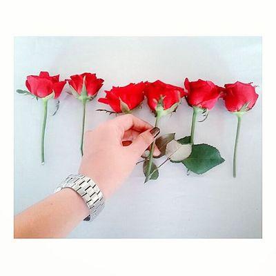 Goodmorning! ツ Day14 Redroses Seventeendaystogo ❤🌹