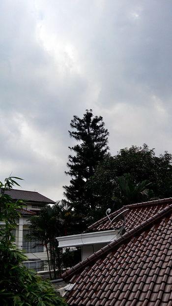 Scenery Shot Side Window Gloomy Weather