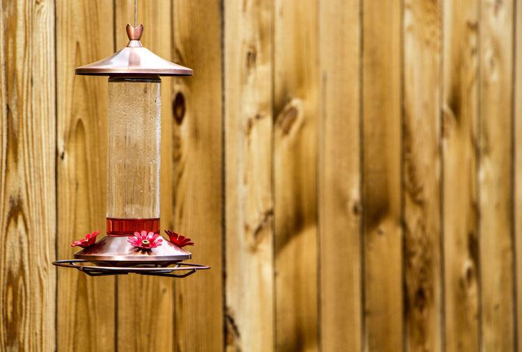 Bird Feeder Hanging Against Wooden Wall