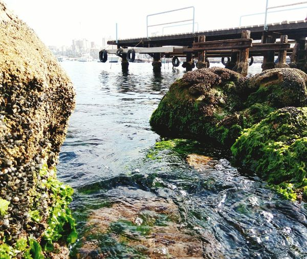 Rock algae Water No People Sky Outdoors Nature Bridge - Man Made Structure First Eyeem Photo Green Color Sea Nature Arch