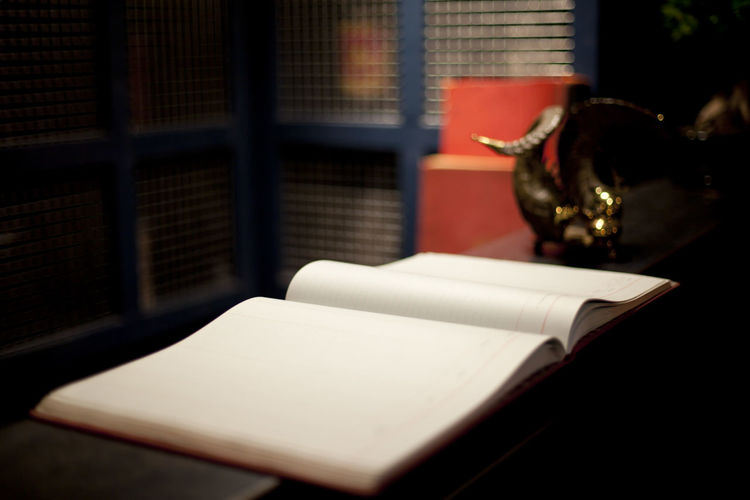 Album Blank Book Desk Horn Indoors  Ledger Open Open Book  Page Pages Pages Of A Book Reception White