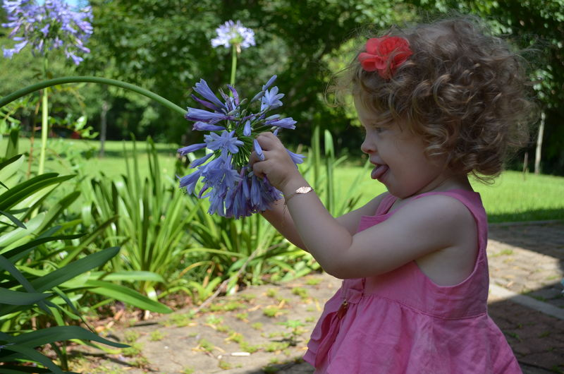 Real People Children Blond Hair Nature Happiness Smile Girls Pink Flower