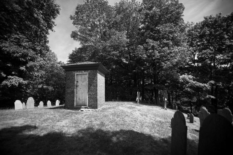 Cemetery Day Grass Grave Gravestone Graveyard Memorial Nature No People Outdoors Sky Tombstone Tranquility Tree