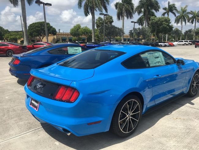2017 Ford Mustang Fiftyyearsofmustang
