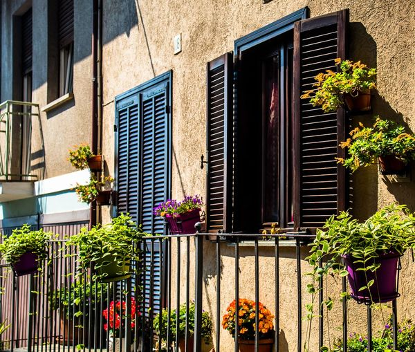 Summer in Italy! Window Box City Window Residential Building Architecture Building Exterior Built Structure Plant Closed Blooming Closed Door Front Door Entrance Door Potted Plant