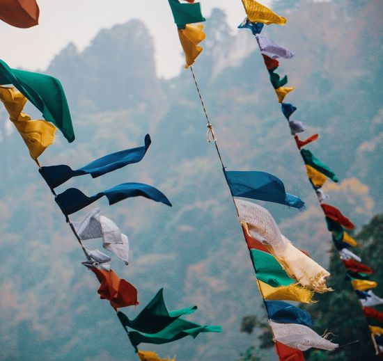 Low angle view of colorful prayer flags hanging
