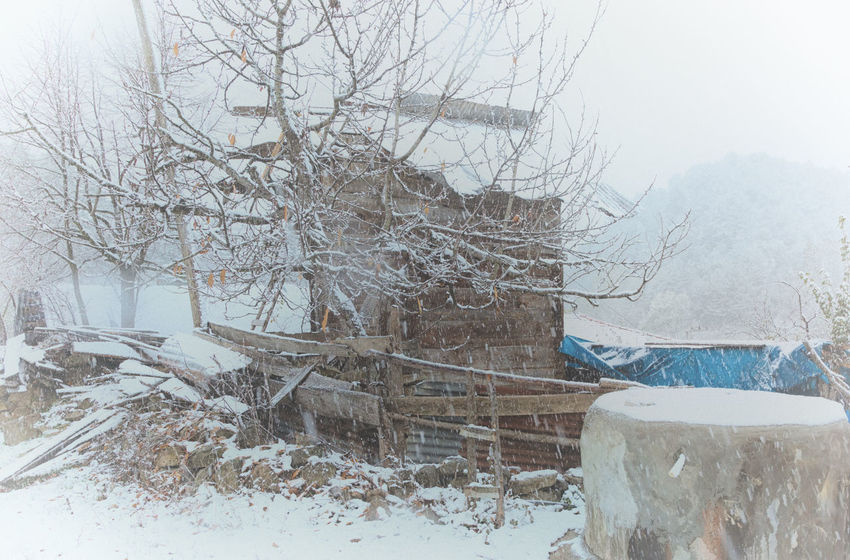 Snowy Village Life Abandoned Buildings Abandoned Places Architecture Bare Tree Beauty In Nature Branch Cold Cold Temperature Icy Misty Nature Nature Outdoors Snowing Snowy Structure Sünnet Sünnetköy Turkey View Village Life Weather Winter