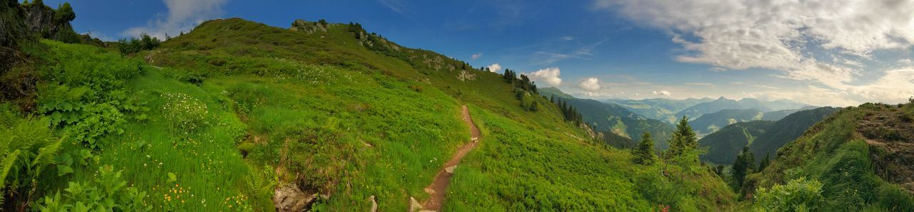 Panorama Mountain Scenics - Nature Sky Panoramic Mountain Range Cloud - Sky Landscape Environment Plant Beauty In Nature Nature Land Valley Green Color No People Travel Destinations Tranquil Scene Tree Day Water Outdoors Mountain Peak Pine Tree Pine Woodland Coniferous Tree