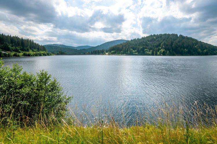 Schluchsee, Black Forest, Germany Schluchsee Black Forest Germany Lake Lake View Beauty In Nature Nature Landscape Water Sport Swimming Bath Bathing Hiking Hike Family Vacations Travel Travel Destinations No People Nobody Outdoors Activity Water Idyllic Forest