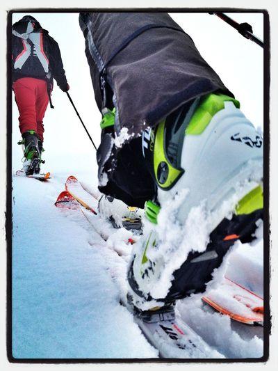 New Friends #daniel #dynafit #skimountaineering #skimo #esquídemontaña #boladelmundo #mountain #spring #ilovemountains #primavera #gasss #training #badsnow #fog