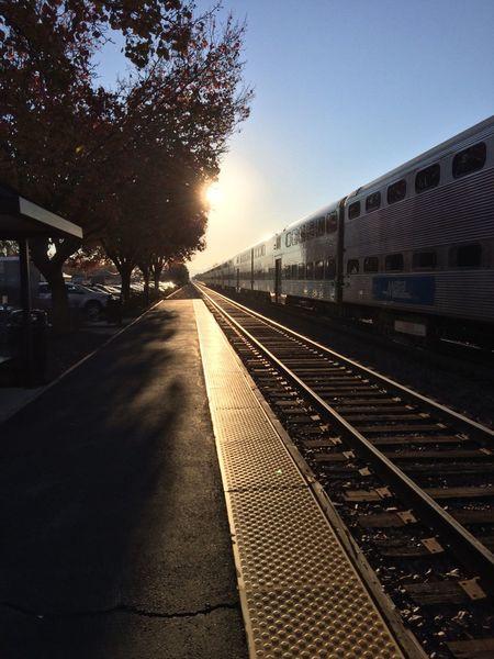 Sun shining theough the tree. Sun Shining Tree Metra Train