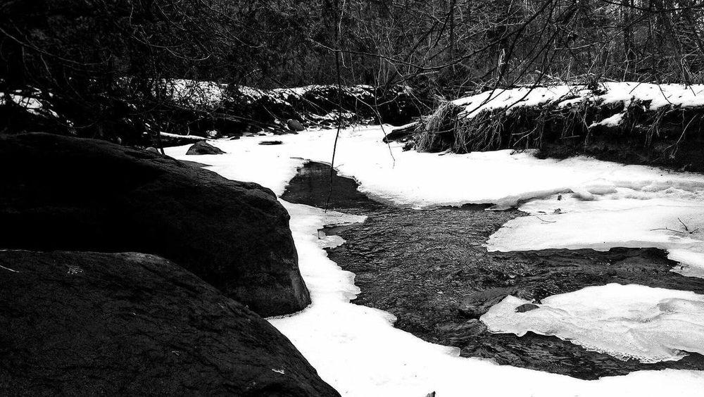 Nature Lake Scenery Winter First Eyeem Photo