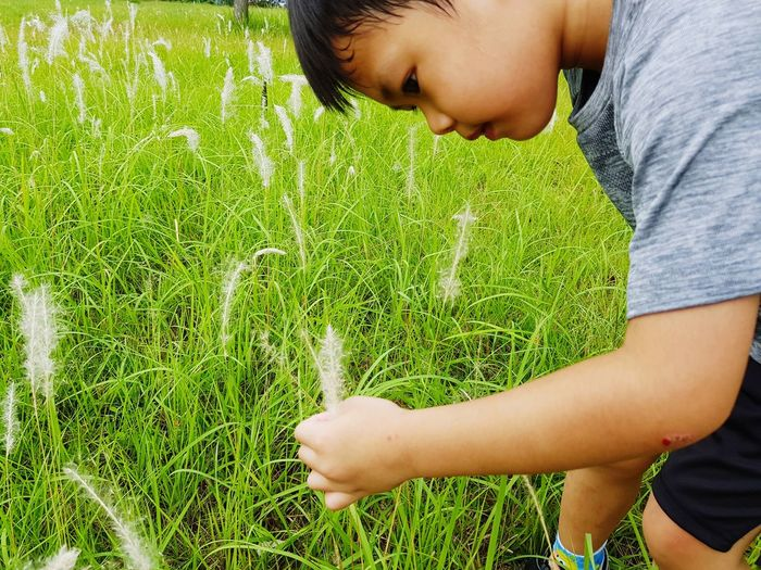 Side View Of Boy Holding Grass On Field