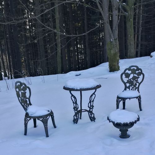 covered rest Rest 3XSPUnity Table Forrest Snow Snowing Cold Temperature Winter Tree Snowflake Chair Table Weather