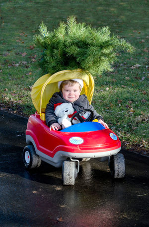 A cute little boy sits in a toy car with his Christmas bear and a small Christmas tree on the top of his vehicle Christmas Holiday Tree Boys Car Child Childhood christmas tree Day Emotion Full Length Innocence Looking At Camera Males  Men Mode Of Transportation Offspring One Person Outdoors Portrait Seasonal Smiling Toy Toy Car Transportation