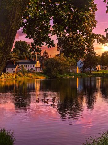 Reflection Tree Water Plant Architecture Built Structure Building Exterior Reflection Lake Waterfront Outdoors No People Beauty In Nature Sky Dusk Travel Destinations Building Sunset Lake Nature