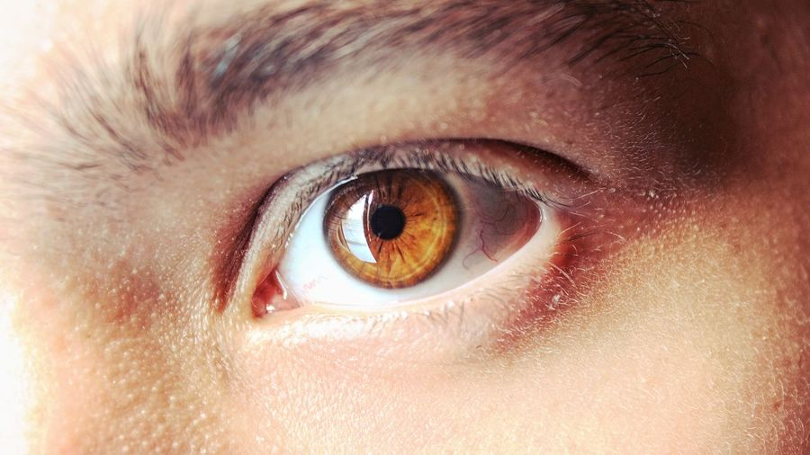 Backgrounds Brown Close-up Detail Extreme Close Up Extreme Close-up Eye Eyeball Eyelash Eyesight Full Frame Human Eye Human Face Human Skin Iris - Eye Lifestyles Macro Part Of Portrait Selective Focus Sensory Perception Staring
