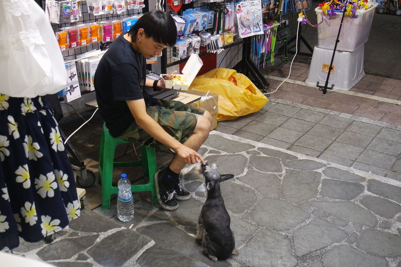 Day Dog Lifestyles Market Market Stall Small Business Taichung Taiwan The Photojournalist - 2016 EyeEm Awards Cities At Night The Shop Around The Corner Feel The Journey ShareTheMeal Neighborhood Map