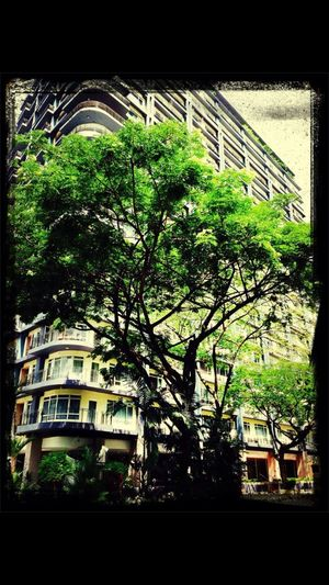 Home Sweet Home Happiness ♡ Condo Buildings Where's Your Happy Place Iphonography