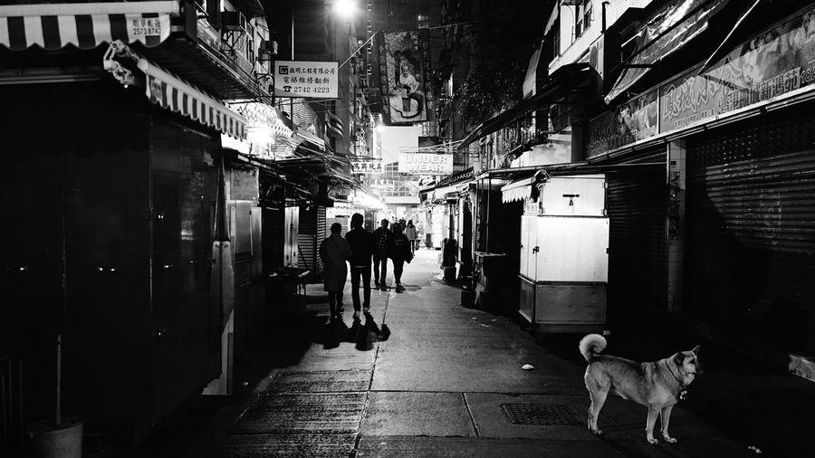 wanchai someday night. HongKong Discoverhongkong Leica Leicaq Nightphotography Streetphotography Blackandwhite Hello World Walking Around Dog EyeEm Best Shots EyeEm Gallery EyeEmBestEdits EyeEmBestPics Eyeemphotography 香港 白黒