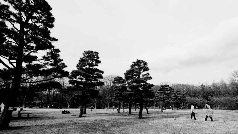 Tree Full Length Large Group Of People Adults Only Young Adult Adult People Outdoors Sky Nature Day Only Men Park MonochromePhotography