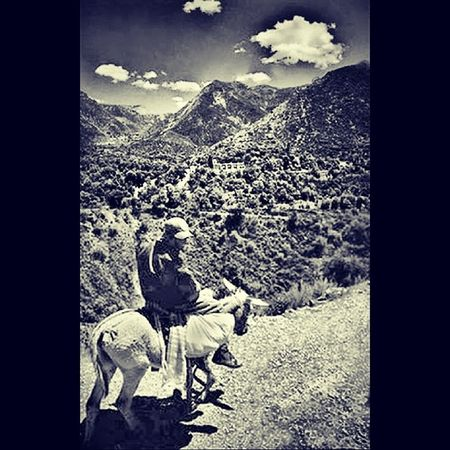 Over the montains and through the desert, I search of wisdom. Realdecatorce Huichol Patria Powerplace magia shaman