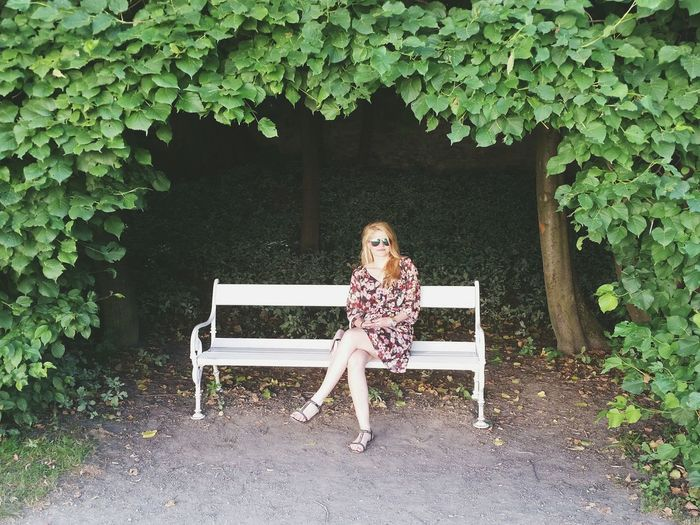 High angle view of woman sitting on bench against trees at park
